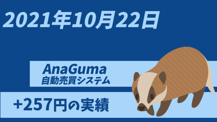 【運用実績】自動売買システム「AnaGuma(アナグマ)」2021年10月22日は+257円の実績!!